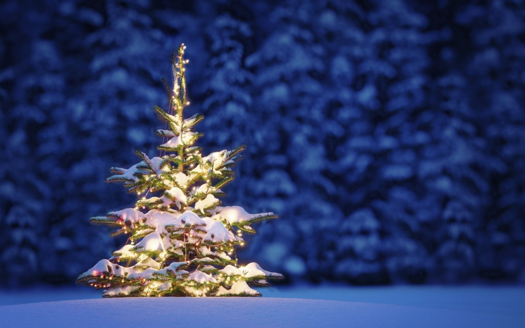 Beautiful-Christmas-Tree-Wallpapers-9